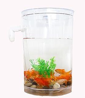 AN-LKYIQI Escritorio Mini creativo plástico pequeño LED Eco acuario pecera