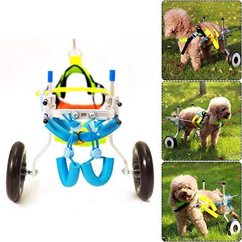 Eachbid Silla de Ruedas Ajustable para Perro rehabilitación de piernas Cachorros para Mascotas reparación para Patas extremidad Posterior (XXS, 2 Ruedas)