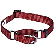 Blueberry Pet Essentials Safety Training Martingale Dog Collar, Fired Brick, Medium, Heavy Duty Nylon Adjustable Collars for Boy and Girl Dogs