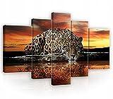 Forwall Bilder 5 Teling SET Tiger Jaguar Afrika Tiere groß