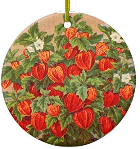 Mesllings Chinese Lantaarn Plant Keramische Ornament Cirkel 3 Inch