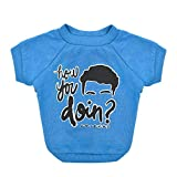 Warner Bros Friends TV Show How You Doin Dog T Shirt in Blue | Soft Dog Shirt, Machine Washable Pull-Over Dog Tshirt, Light Weight & Semi-Stretch | Size Small for All Small Dogs and Puppies