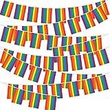 VINFUTUR Bandera Decorativa Fiesta, 2 Juego de Bandera Arcoiris Banderín Orgullo Gay LGBT...