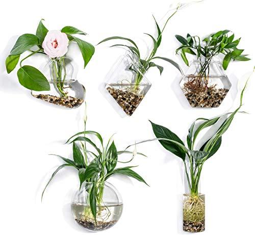 WayGlory - Fioriere in vetro trasparente da appendere alla parete, vasi rotondi in vetro da appendere, vasi da fiori, vasi da fiori e terrari (stile 3)