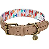 <span class='highlight'>Blueberry</span> <span class='highlight'>Pet</span> Shades of Rainbow Multicolor Triangles Polyester Fabric Webbing and Soft Genuine Leather Dog Collar, Small, Neck 30.5cm-38cm, Adjustable Collars for Dogs