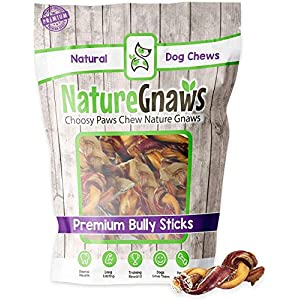 Nature Gnaws Braided Bully Stick Bites for Small Dogs – Premium Natural Beef Bones – Long Lasting Dog Chew Treats – Rawhide Free – 1 LB Bag