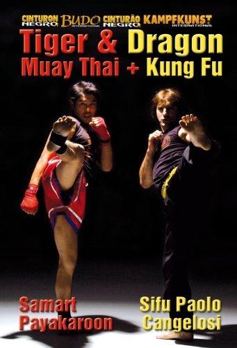 Kung Fu y Muay Thai. Dragon y Tigre