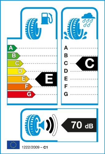 ROADSTONE RT15301-195/55/R15 85H - E/C/73dB - WINTER reifen