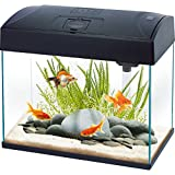 Fish 'R' Fun Rectangular Tank, 20 Litre Capacity, Black