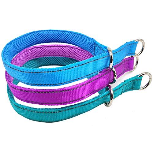 Mycicy Reflective Dog Choke Collar, Soft Nylon Training Slip Collar for Dogs (1