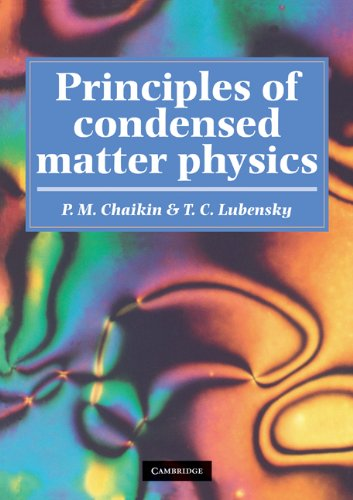 Principles of Condensed Matter Physics (English Edition)