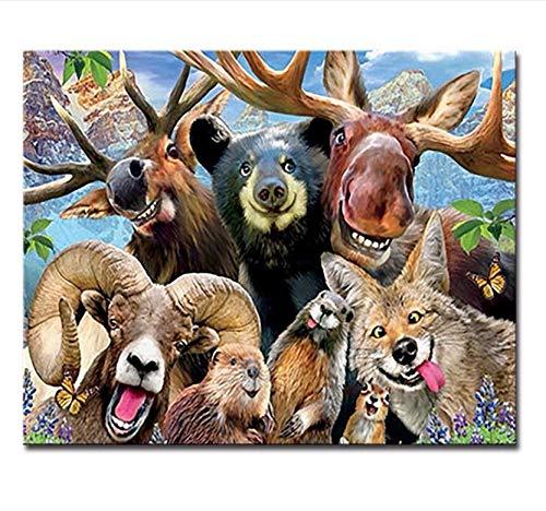 LIWEIXKY Senza Telaio Pittura Fai da Te con I Numeri Kit da Colorare Animali Olio Immagine Mano Dipingere Disegno Cervo Volpe Orso Renna Mouflon su Tela Decorazioni per La Casa 50X60Cm