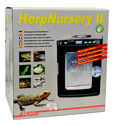 Lucky Reptile HN-2 Herp Nursery Bild