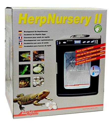 Incubadora terrarios Lucky Reptile incubadora II