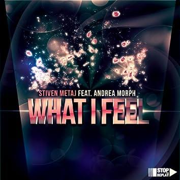 What I Feel (feat. Andrea Morph)