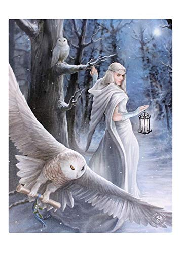 Fantastic Anne Stokes Design - Midnight Messenger - A Gothic Druid / Angel with White Owls Canvas Picture on Frame Wall Plaque / Wall Art