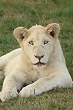 White Lioness African Mammal Journal: 150 Page Lined Notebook/Diary/Journal