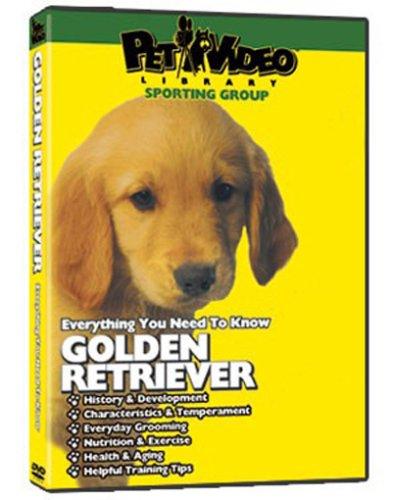 GOLDEN RETRIEVER DVD! + Dog & Puppy Training Bonus