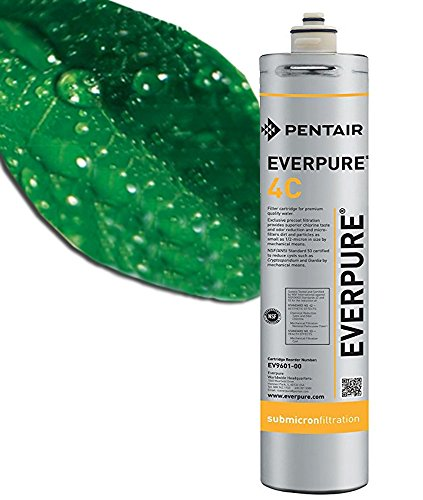 Filtro de agua Everpure 4C EV9601-00. Cartucho para filtros de agua. Elimina el cloro y las partículas. Mejora el olor y el sabor del agua