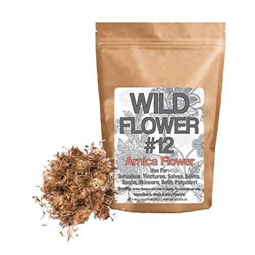 Wild Foods Arnica Flower #12 Dried Whole Arnica Flowers, Non-GMO, All Natural, Non-irradiated (External use only) (4 ounce)