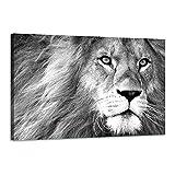 Arjazia - Cuadro decorativo de león – Decoración animal – blanco y negro – 60 x 40 cm y 90 x 60 cm – Impresión de alta resolución – Lienzo estirado sobre un marco de madera (90 x 60 cm)
