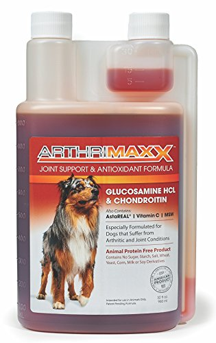 Top 10 best selling list for arthrimaxx liquid joint protection supplement for dogs 32 oz. bottle