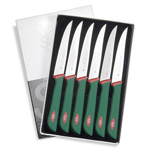 Sanelli Ligne Premana Professional,Ensemble Couteaux Steak 6 pcs,Acier Inoxydable,Vert et Rouge,25.5x15.5x2.0 cm