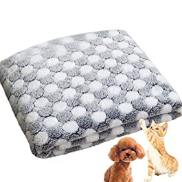 HAODEE Dot Pattern Pet Blanket Warm Washable Soft Fabric Bed Blankets for Protection Puppy Cat(100 X 80cm)
