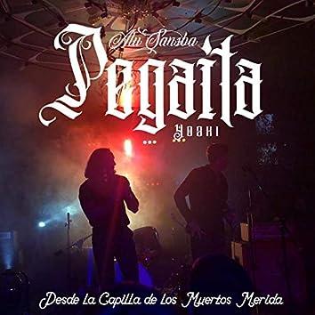 Pegaita (Desde La Capilla De Los Muertos Merida)