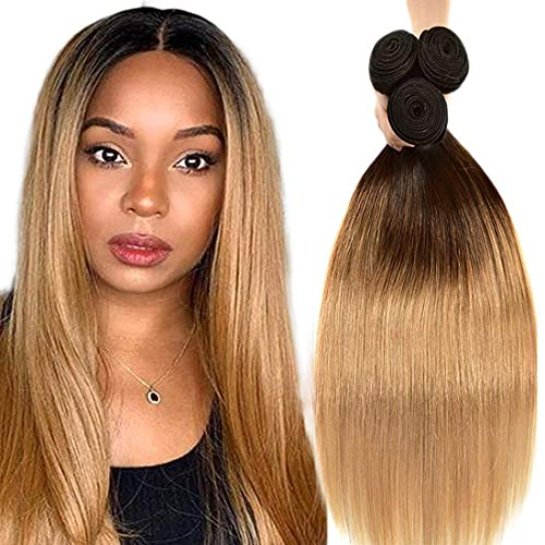 1b27 hair color _image0