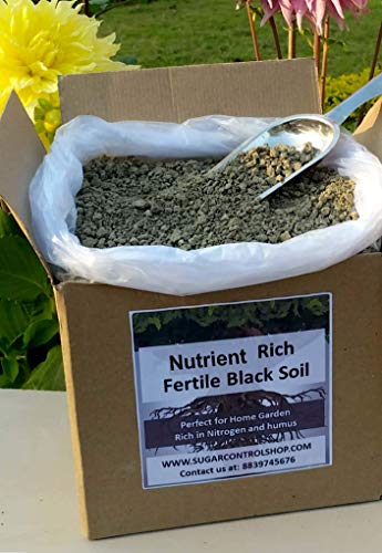 Shiviproducts Nutrient Rich Fertile Black Forest Soil for Seed Germination and Plant Growth (9.5 Kg) | Free Seeds - Spinach, Radish, Coriander, Methi