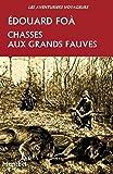Chasses aux grands fauves (Les aventuriers voyageurs) (French Edition)
