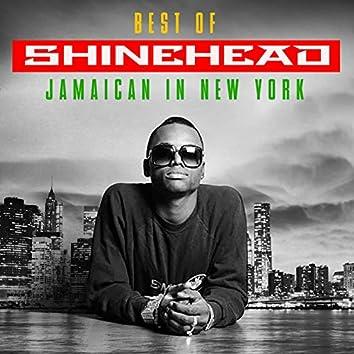 Jamaican In New York: Best Of