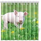 K.e.n Bad Vorhang Junge lustige Schwein auf Frühling grün Polyester Stoff wasserdicht Duschvorhang für Badezimmer