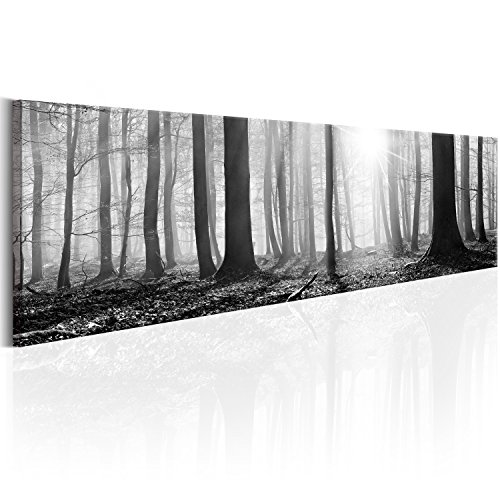 murando - Bilder Wald 172x45 cm Vlies Leinwandbild 1 TLG Kunstdruck modern Wandbilder XXL Wanddekoration Design Wand Bild - Waldlandschaft Natur Panorama Baum schwarz-weiß c-B-0247-b-a