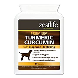 Zestlife Turmeric for Dogs extract equivalent to 10,000g. Supplement for joint and hips 60 capsules