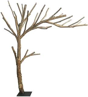 Amazon.es: tronco de arbol
