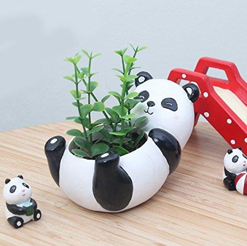 Binoster Blumentöpfe, Niedlichen Tierförmigen Cartoon Sukkulenten Vase Blumentöpfe, Container, Dekoration Pflanzer Töpfe, Schreibtisch Mini Ornament (Panda)