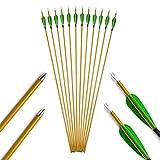 AMEYXGS 12pcsFrecce in Carbonio Tiro con L'Arco 31 Pollici Frecce in Fibra di Carbonio S...