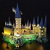 IIKA Kit LED Kit d'Éclairage pour Lego Harry Potter Château de Poudlard 71043 - édition Deluxe