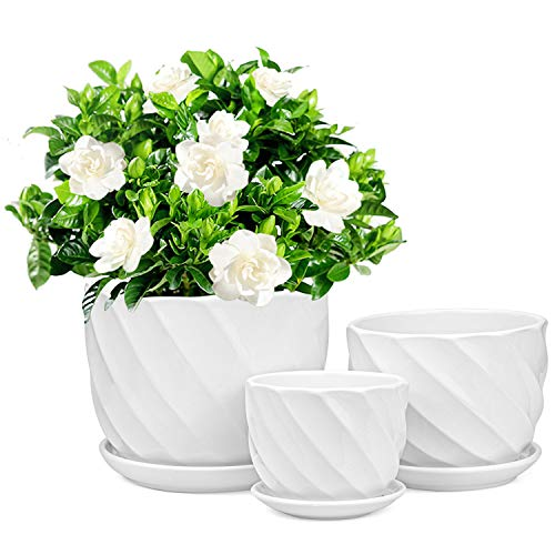 Foraineam Set of 3 Round Modern Ceramic Planter Pot Small to Large Sized Garden Flower Plant Pots White Succulent Cactus Containers with Drainage and Saucer