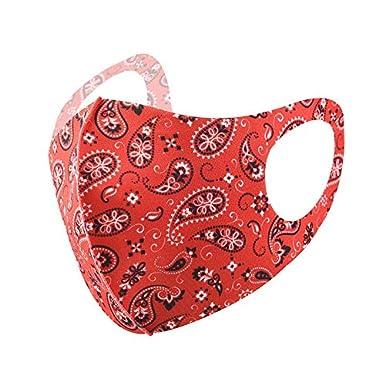 Mascarillas lavables contra el polvo, impermeables, protección solar, máscaras de seda de hielo, máscaras de tela reutilizables, máscara facial transpirable, 10 unidades (rojo)