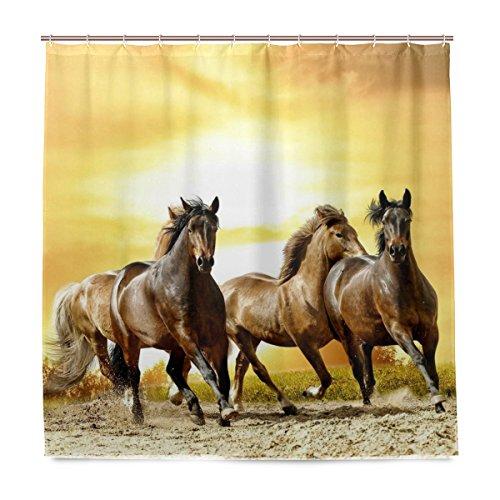 ISAOA Gruppe Pferd im Sonnenuntergang Wasserdicht Duschvorhang, schimmelresistent antibakteriell Personalisiertes Design Polyester Stoff Vorhang für Badezimmer, 180x 180cm mit 12Haken
