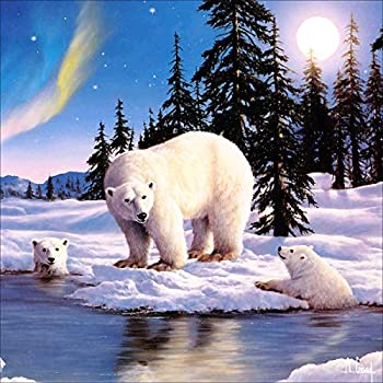 DIY 5D Painting by Numbers Kits for Adults Polar Bear Art Crystal Rhinestone Embroidery Easy Cross Stitch Arts Craft Supply Canvas for Home Kitchen Hotel Salon Wall Décor 30X30cm