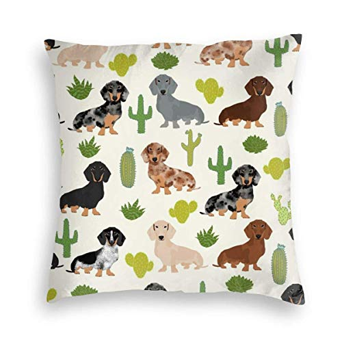 Doxie Cactus Cute Dachshund With Cacti Fun Cactus Cute Cacti Design Best Dogs And Cactus Velvet Soft Decorative Square Throw Pillow Covers Cushion Case Pillowcases for Sofa Chair Bedroom Car 18X18inch