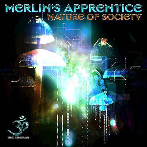 Merlin's Apprentice