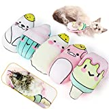 Legendog Catnip Toys for Cats Chew Toy - 5PCS Pillows Cat Toys for Indoor and Interactive Cat Soft Toy Catnip for Kitten|Cat Teething Toys with Adorable Animal Face