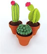 Juego de ganchillo Set de ganchillo con instrucciones y material para hacerse uno mismo 3 cactus diferentes con tres macetas de terracota; aprox. 7 - 13 cm de alto. Regalo personalizado.