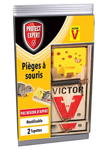 PROTECT EXPERT SOUTAP2 Pièges À Souris-2 Tapettes Bois-Rapide, Précis Et Faciles A Utiliser, Incolore