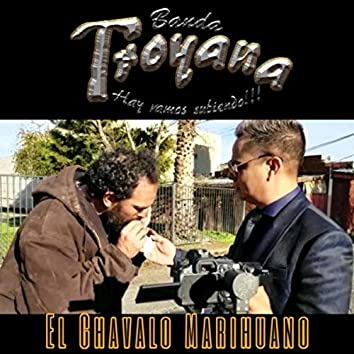 El Chavalo Marihuano